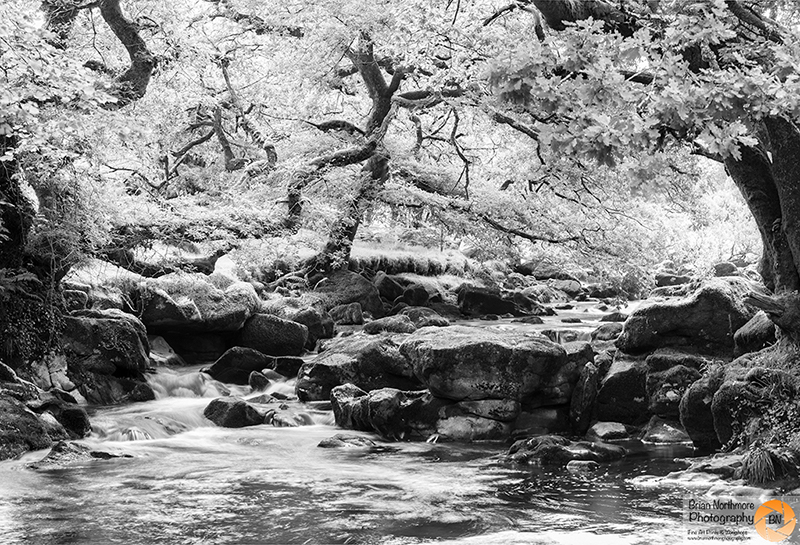 Black and White Photograph of a Waterfall on The River Ply