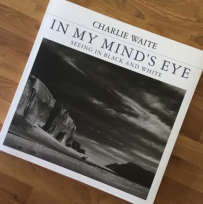 37115792079e5 In My Minds Eye - Book Review
