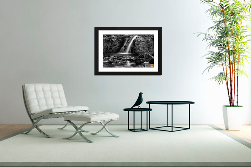 Gallery and Print Sales