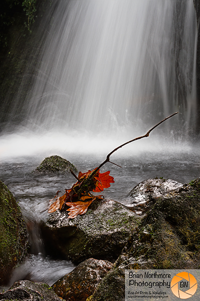 Red Lead at Venford Falls